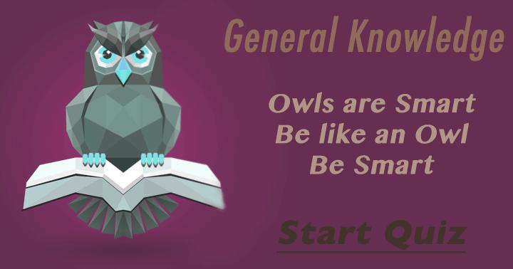 Be smart, be like an Owl