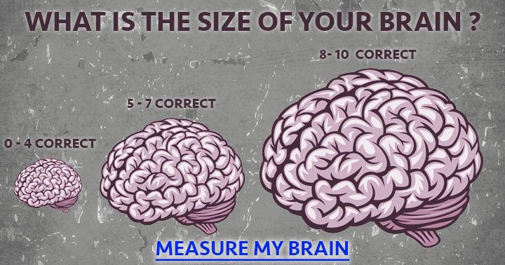 Brain size does matter