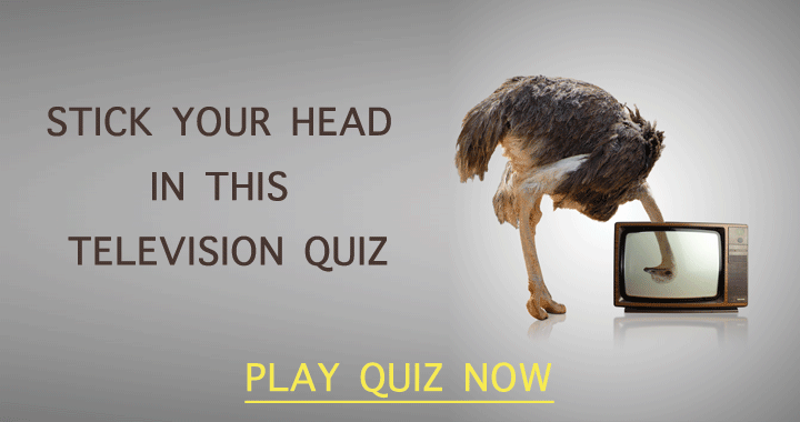 Stick your head in this amazing Television quiz!