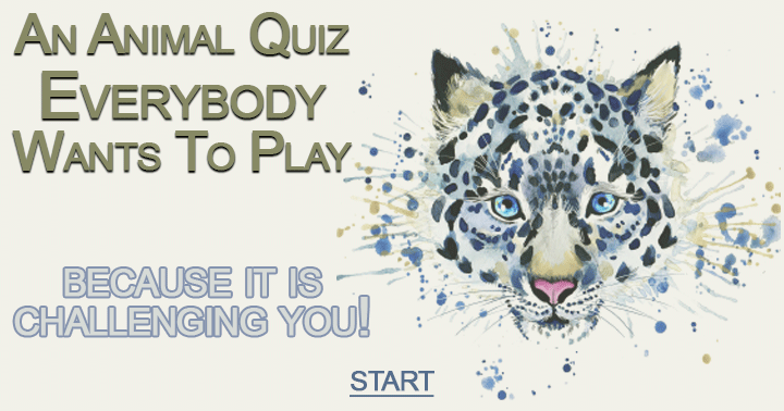 Let's see how many quizzes can score above a 7!
